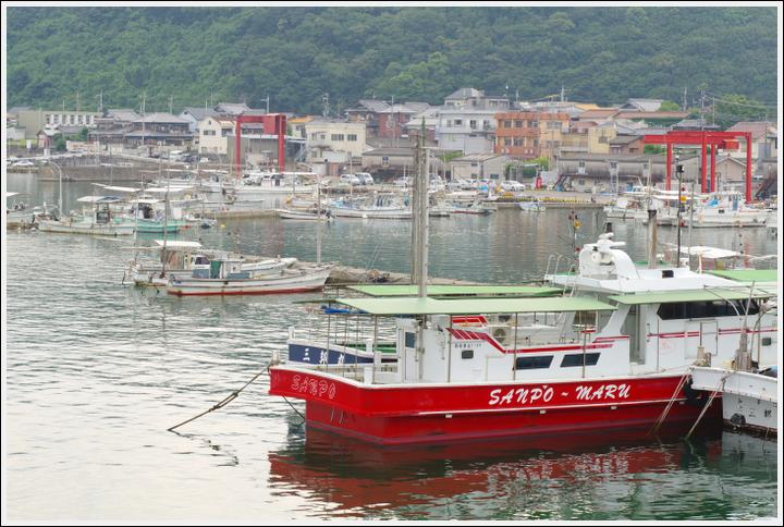 2017年7月11日 磯ノ浦~加太 (4)