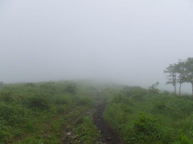 霧ヶ峰高原 2017.7.21 021