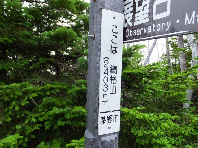 茶臼山と縞枯山 2017.8.4 199