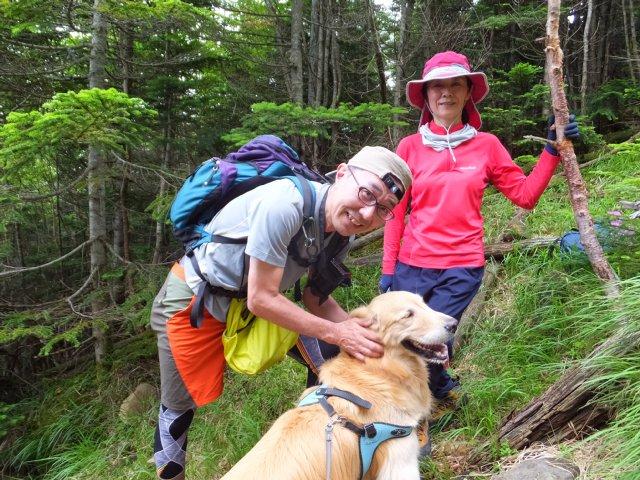 茶臼山と縞枯山 2017.8.4 268