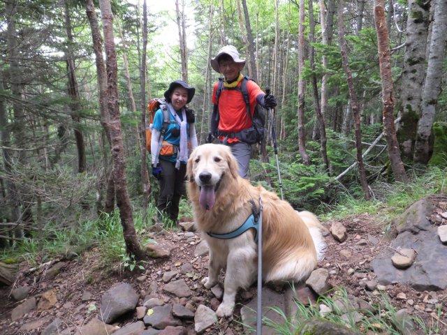 茶臼山と縞枯山 2017.8.4 273
