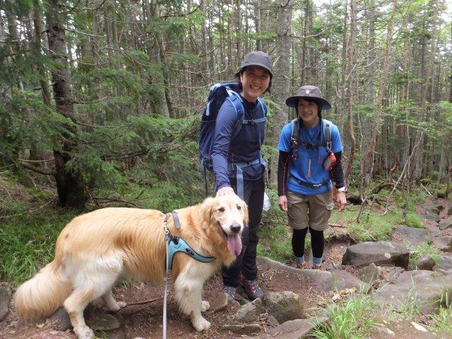 茶臼山と縞枯山 2017.8.4 274