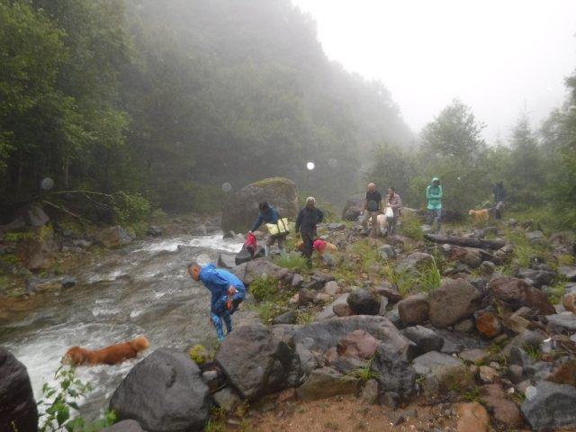 八ヶ岳渓流2017.8.16 003