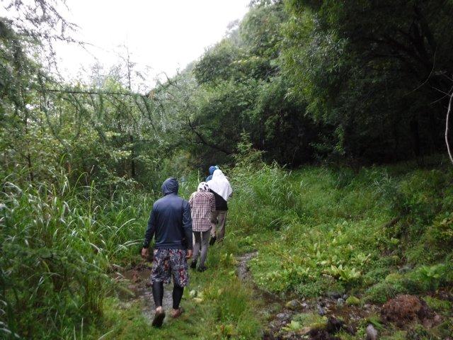 八ヶ岳渓流2017.8.16 058