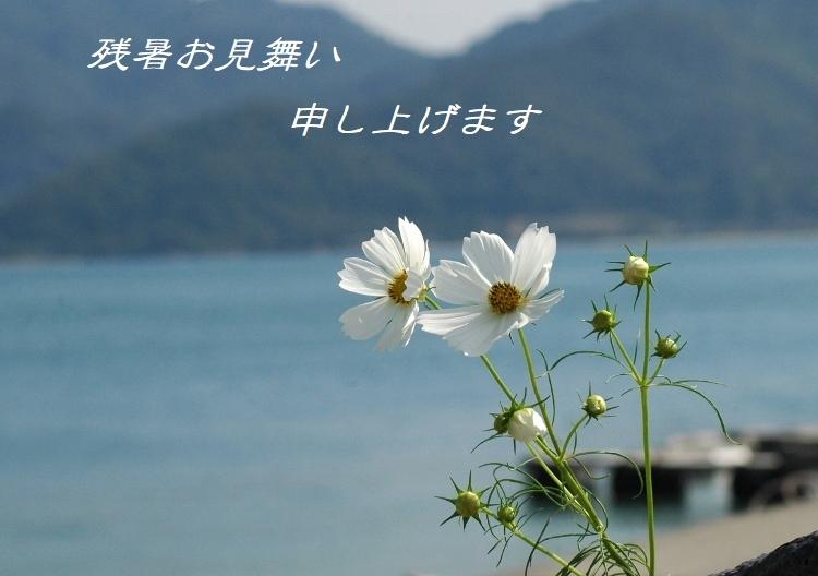 夏の忘れ物 122 (750x528)