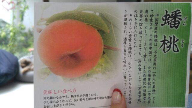 moblog_1bc70ddf.jpg