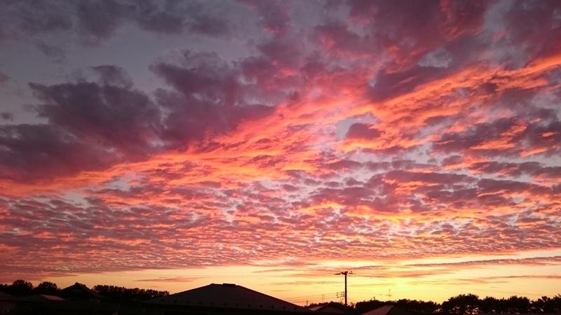 DSC_0249[1]夕焼け