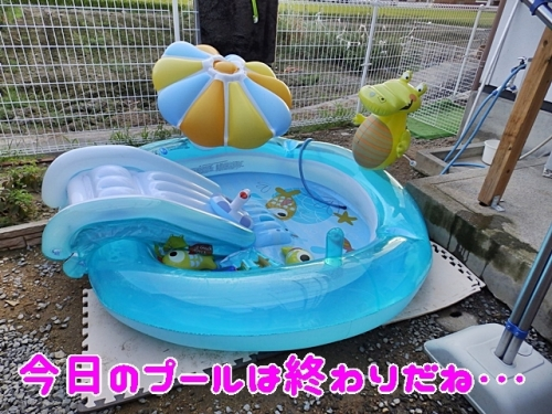 今日のプールはおわり