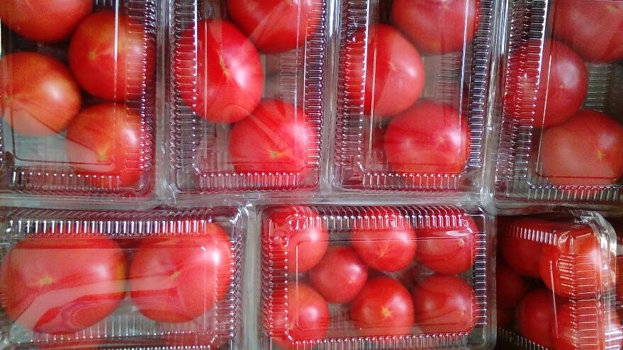 0715トマト