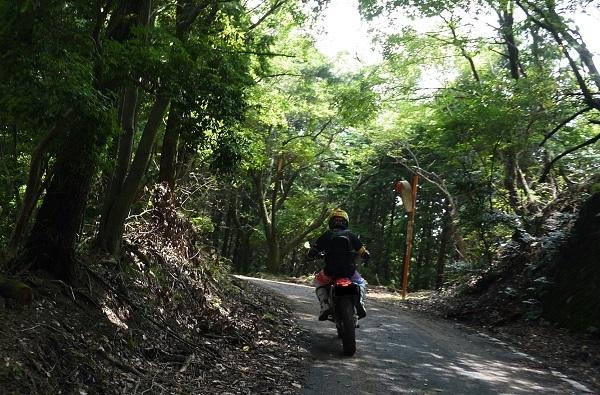 近所の林道プチツー1707-004b