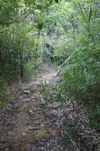近所の林道プチツー1707-009b