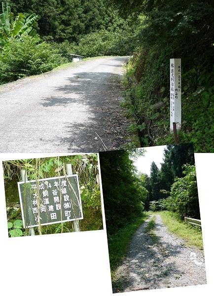 四国林道キャンプツー1708-day3-031b