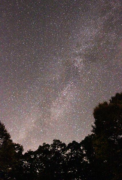 胎内星まつり 星空~はくちょう座~