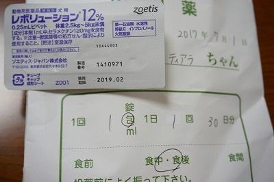 s-DSC01271.jpg