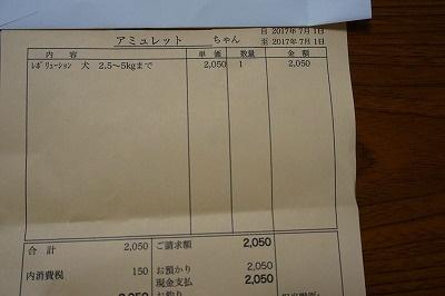 s-DSC01279.jpg