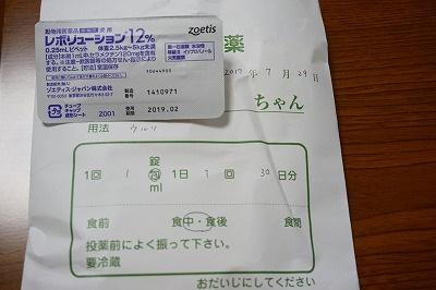 s-DSC01425.jpg