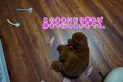 s-DSC01690.jpg