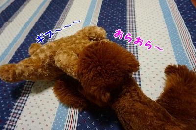 s-DSC01700.jpg