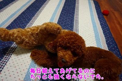 s-DSC01701.jpg