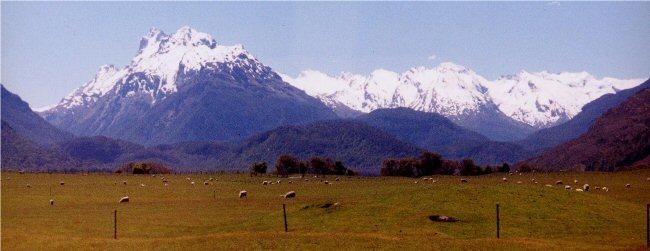 山奥の牧場