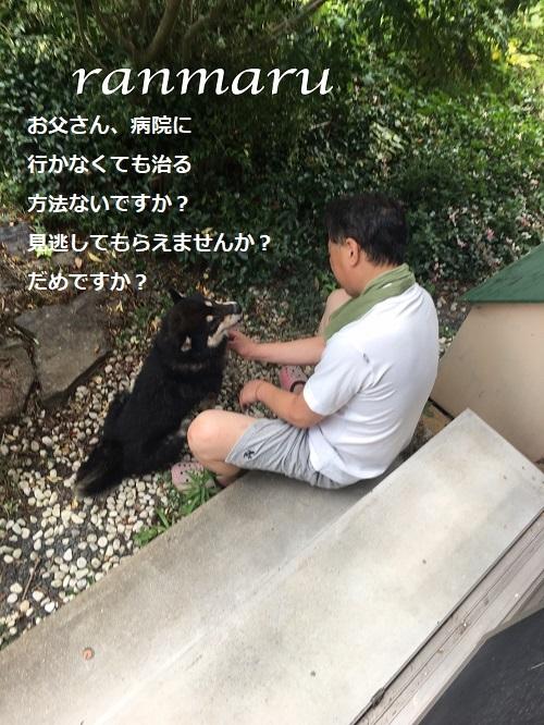 まるちゃん2017082103