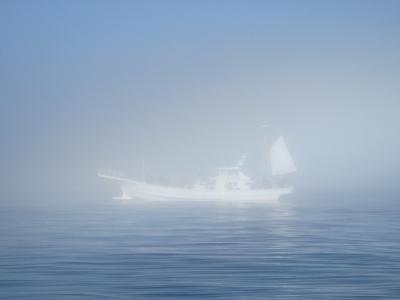 靄の中の僚船
