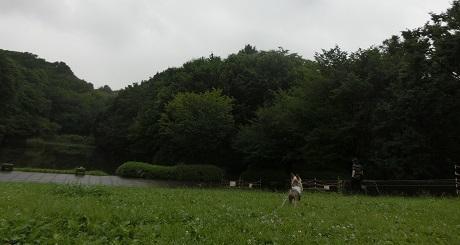 201707304.jpg
