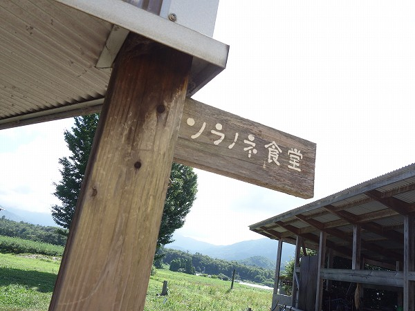DSC01908.jpg