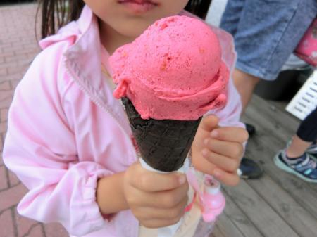 ポーランド アイスクリーム11