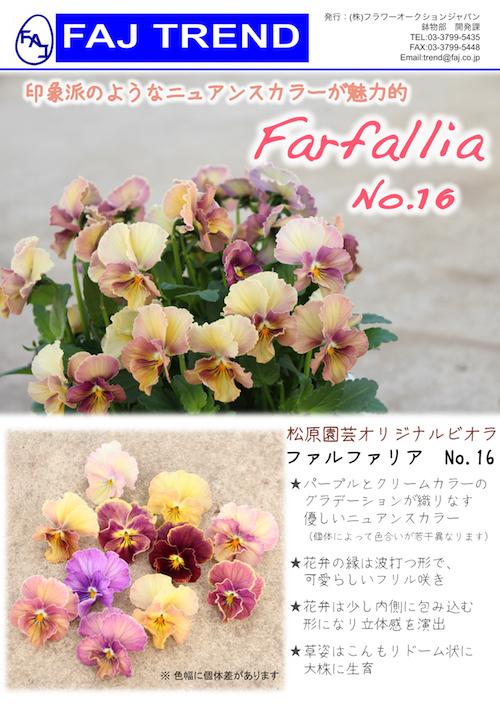 ビオラ ファルファリア No16