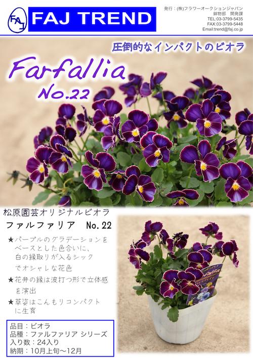 ビオラ ファルファリア No22