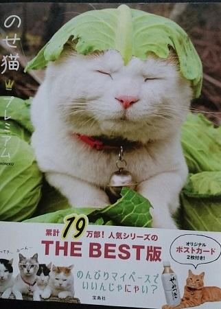 のせ猫表紙