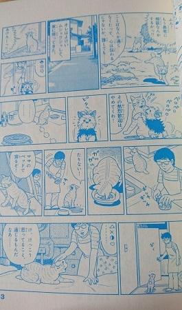 トラ吉本編4