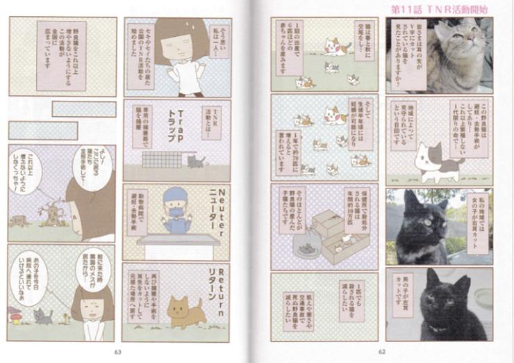 猫絵日記TNR
