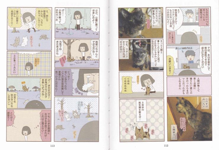 猫絵日記2