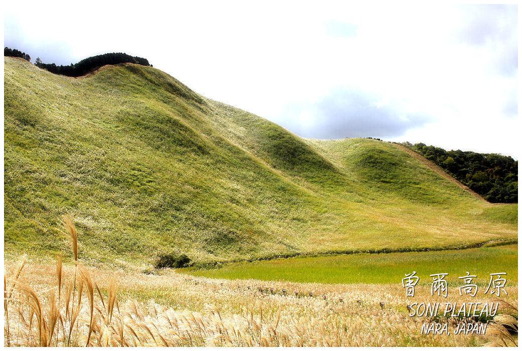 Soni Plateau