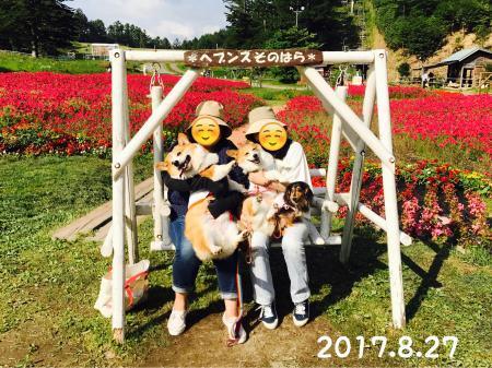 036_convert_20170911121623.jpg