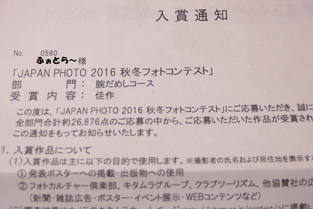 japan-photo.jpg
