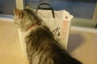 ネコとパンの紙袋
