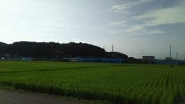 私の町の田園風景♪