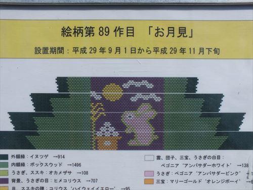 DSCF8823_R.jpg