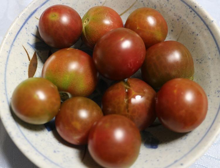 黒トマト戴きました 29.7.22
