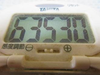 170723-291歩数計(S)