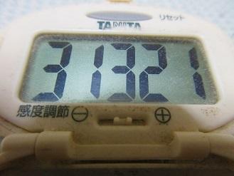 170819-291歩数計(S)