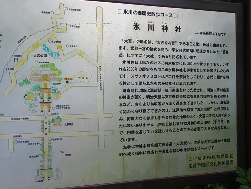 170820-202氷川神社(S)