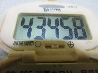 170909-291歩数計(S)