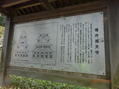 fukui_016.jpg