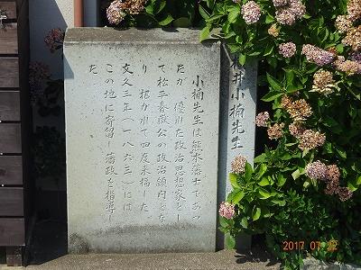 fukui_041.jpg