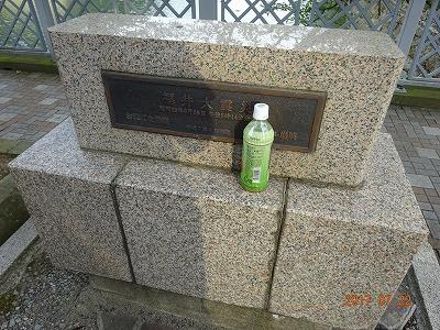 fukui_081.jpg