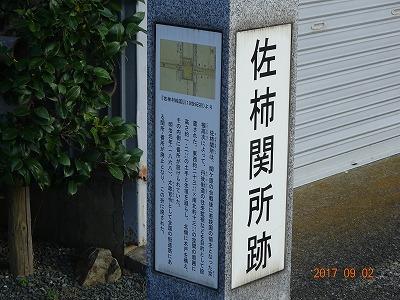 mihama_014.jpg